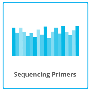 Sequencing Primers